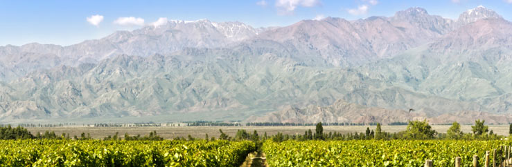 Learn and Study Spanish in Mendoza - © Edsel Querini