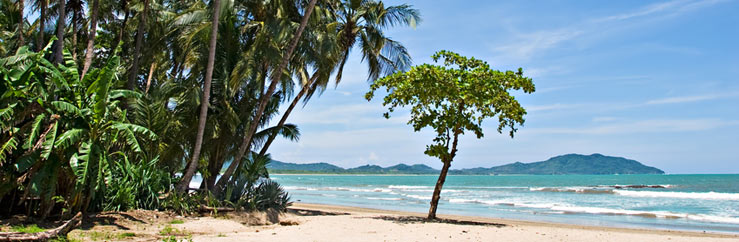 Learn and Study Spanish in Playa Tamarindo - © Antonio Nunes