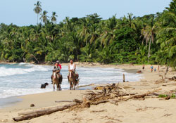Horseback riding and Spanish in Puerto Viejo
