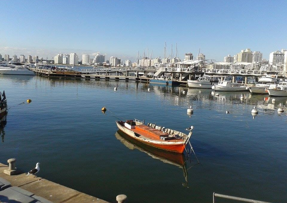 Practice Spanish in Punta del Este markets